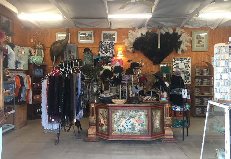 Ostrich Land Store